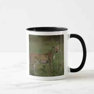 Africa, Botswana, Okavango Delta. Leopard Mug