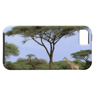 Africa, Botswana, Okavango Delta. Southern iPhone SE/5/5s Case