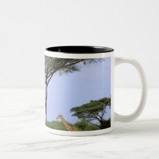 Africa, Botswana, Okavango Delta. Southern Coffee Mug