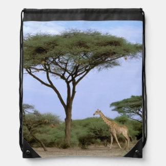 Africa, Botswana, Okavango Delta. Southern Drawstring Backpack
