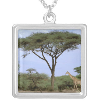 Africa, Botswana, Okavango Delta. Southern Square Pendant Necklace
