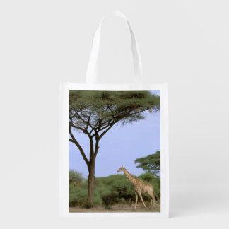 Africa, Botswana, Okavango Delta. Southern Reusable Grocery Bags