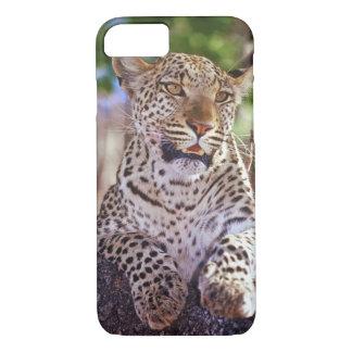 Africa, Botswana, Okvango Delta, wild leopard. 2 iPhone 7 Case