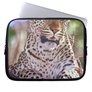Africa, Botswana, Okvango Delta, wild leopard. 2 Laptop Sleeve