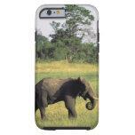 África, Botswana, parque nacional de Chobe. Funda Para iPhone 6 Tough