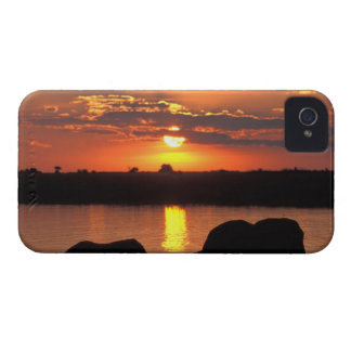 África, Botswana, parque nacional de Chobe, manada iPhone 4 Case-Mate Funda