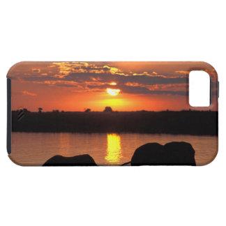África, Botswana, parque nacional de Chobe, manada iPhone 5 Carcasa