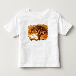 Africa, Botswana, Setting sun silhouettes Baobab Toddler T-shirt