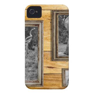 Africa. Case-Mate iPhone 4 Cases