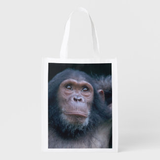 Africa, East Africa, Tanzania, Gombe National 2 2 Reusable Grocery Bags