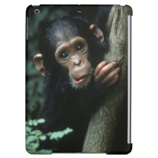 Africa, East Africa, Tanzania, Gombe National 2 iPad Air Cover