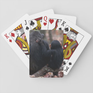 Africa, East Africa, Tanzania, Gombe National 2 Playing Cards