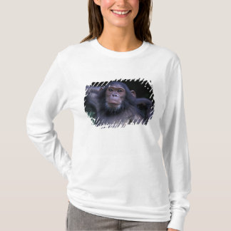 Africa, East Africa, Tanzania, Gombe National 3 T-Shirt