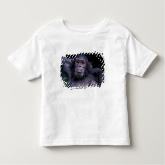 Africa, East Africa, Tanzania, Gombe National 3 Toddler T-shirt