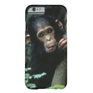 Africa, East Africa, Tanzania, Gombe National Barely There iPhone 6 Case