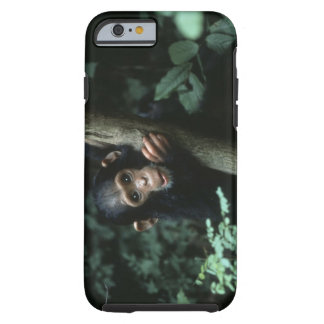 Africa, East Africa, Tanzania, Gombe National Tough iPhone 6 Case