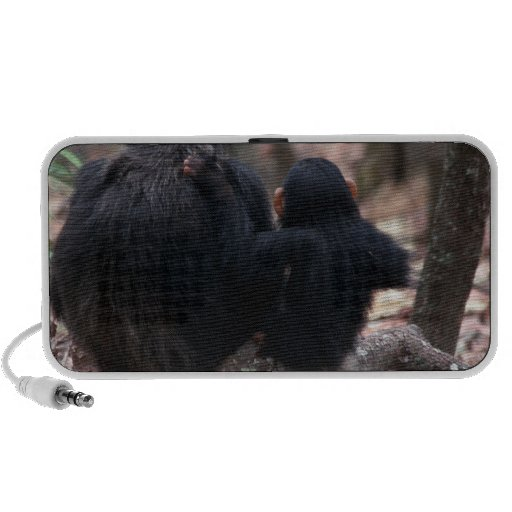 Africa, East Africa, Tanzania, Gombe National iPhone Speaker