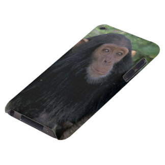 Africa, East Africa, Tanzania, Gombe NP Infant Case-Mate iPod Touch Case