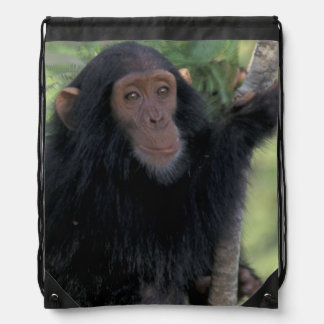Africa, East Africa, Tanzania, Gombe NP Infant Drawstring Bag