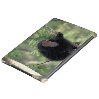 Africa, East Africa, Tanzania, Gombe NP Infant iPad Air Cases