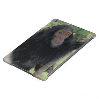 Africa, East Africa, Tanzania, Gombe NP Infant iPad Air Cover