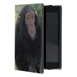 Africa, East Africa, Tanzania, Gombe NP Infant Cases For iPad Mini