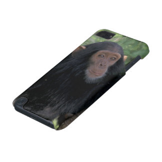 Africa, East Africa, Tanzania, Gombe NP Infant iPod Touch (5th Generation) Cover