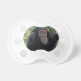 Africa, East Africa, Tanzania, Gombe NP Infant Baby Pacifier