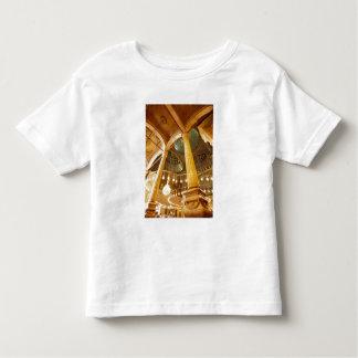 AFRICA, Egypt, Cairo, Muhammad Ali Mosque T-shirt
