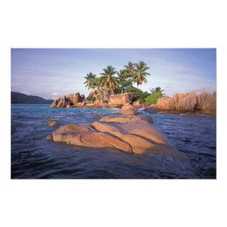 África, el Océano Índico, Seychelles, Praslin Cojinete