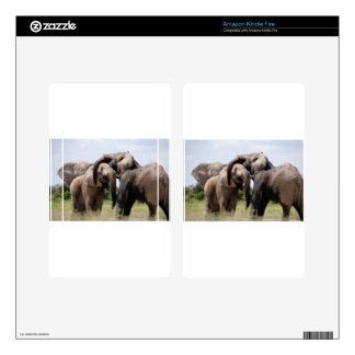 Africa Elephant Family Decals For Kindle Fire
