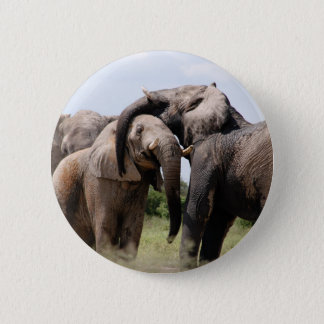 Africa Elephant Family Pinback Button
