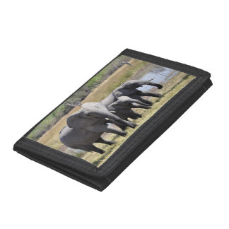 Africa Elephant Herds Tri-fold Wallet