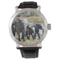Africa Elephant Herds Wrist Watch