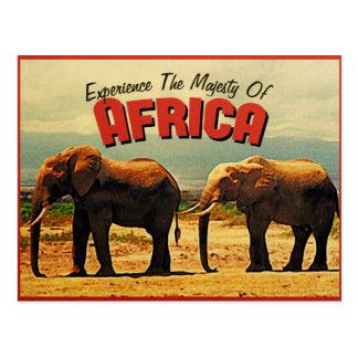 Africa Elephants Vintage Travel Postcard