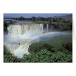 África, Etiopía, el río Nilo azul, catarata. 2 Felicitación