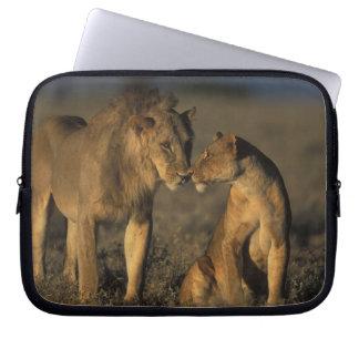 África, Kenia, búfalo salta reserva nacional, Fundas Portátiles