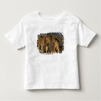 África, Kenia, búfalo salta reserva nacional, Playera De Bebé