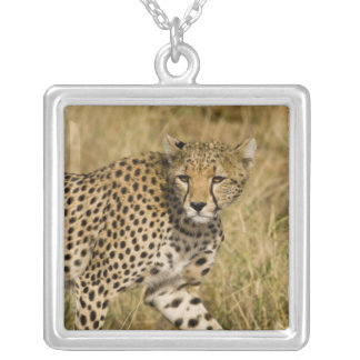África Kenia Guepardo en Samburu NP 3 Pendientes Personalizados