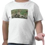 África, Kenia, guepardos Camisetas