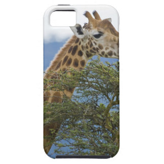 África. Kenia. La jirafa de Rothschild en el lago iPhone 5 Carcasas