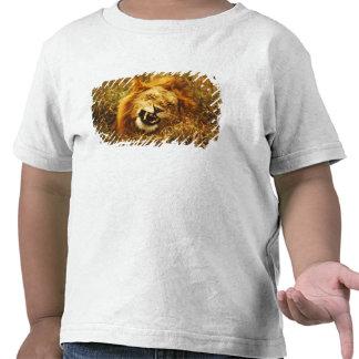 África, Kenia, Maasai Mara. León masculino. Camiseta