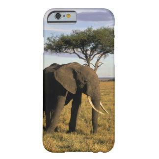 África Kenia Maasai Mara Un elehpant en