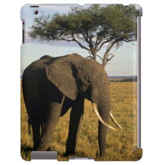 África, Kenia, Maasai Mara. Un elehpant en Funda Para iPad