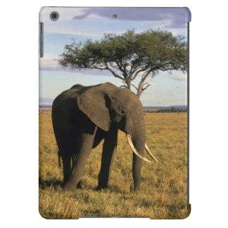 África, Kenia, Maasai Mara. Un elehpant en Funda Para iPad Air