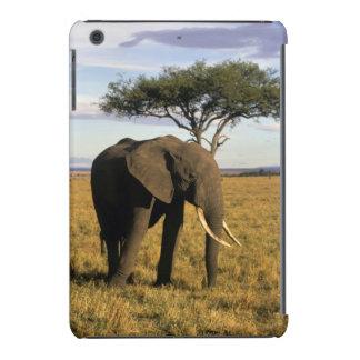 África, Kenia, Maasai Mara. Un elehpant en Funda Para iPad Mini Retina