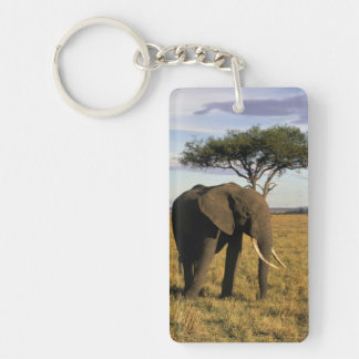 África, Kenia, Maasai Mara. Un elehpant en Llavero Rectangular Acrílico A Doble Cara