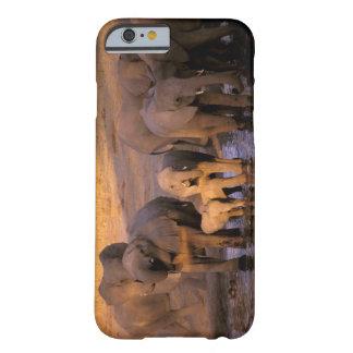 África, Kenia, Masai Mara. Elefantes (Loxodonta Funda De iPhone 6 Barely There