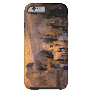 África, Kenia, Masai Mara. Elefantes (Loxodonta Funda De iPhone 6 Tough