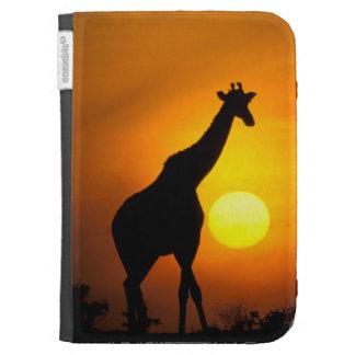 África Kenia Masai Mara Jirafa jirafa